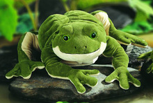 wholesale frog toy