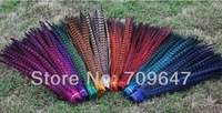 """100Pcs/Lot 20-22"""" 50-55cm DYED Ringneck Pheasant Tail Feathers-Assorted Colors - Fly Tying freeshipping"""