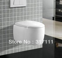 WC bathroom toilet concealed cistern washdown wall hung toilet
