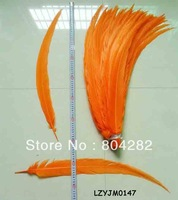 70-80cm Long Size Dyed Orange Silver Pheasant Feathers EMS Free Shipping 100pcs/lot