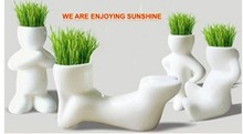 Free Shipping!REAL Grass 4PCS New Arrival Series of Real Planting Grass Little Vase Good for Gift Decoration(China (Mainland))