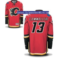 Wholesale-Calgary Flames #13 Mike Cammalleri Red Jersey,Hockey Jerseys,Embroidery logos,Mix order,Free Shipping