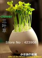 Creative home! simulation plant potted clover small night light LED optical sensing 7 colour  energy saving Lamp +Free shipping