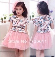 2013 Kids baby girls christening dresses children tutu dresses floral print princess pink dress,wholesale,A32,free shipping