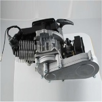 Hot Selling 2 Stroke 49CC Engine and 2 Stroke Gearbox