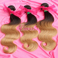 Ombre Hair Extensions,Colored Two-Tone, 3pcs/lot,100% Brazilian Human Ombre Hair Weave bundles, T1B/27 color,12-24inch available