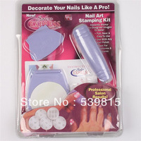 1 set/lot , Factory Price Wholesale Light Purple Professional Nail Art Stamp Plates Polish DIY Stamping Design Kit