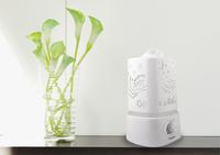 Ultrasonic White Fashion Large Capacity Aromatherapy Diffuser + Humidifier For Facial Beauty Moisturizing