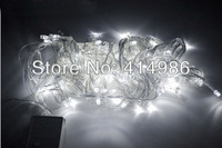 Free shipping retail 10m 100pcs LEDs outdoor decoration lighting led string lighting holiday wedding lamp 110V L10100