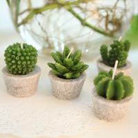 4pcs Green plant bonsai candle home decoration crafts decoration