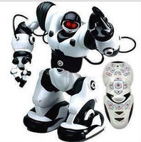 Free Shipping Tt313 remote control intelligent robot voice-activated robot toy