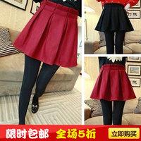 Autumn women's autumn and winter fashion all-match wool woolen skirt bust skirt bud umbrella skirt
