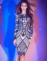 Elegant Black vestidos HL Long Sleeve Bandage Dress High Quality Evening gown celebrity dresses new fashion 2013 Garments
