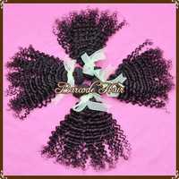 Unprocessed Peruvian Virgin Kinky Curly Hair Grade 5A Remy Human Extensions Weave Weft 100 Gram Bundle 3 PCS Lot Mix 14 16 18 20