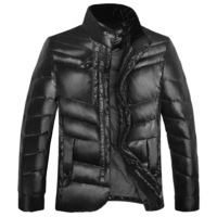 Jacket commercial ripe men's clothing down coat stand collar autumn and winter coat cold-proof thermal wadded jacket multi-color