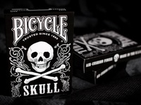 Newest Bicycle Skull Deck High Quality Playing Cards Creative Magic Cards Factory Sale