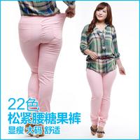 2013 autumn big size pants women elastic waist candy color legging female mid waist plus size pencil pants fat girl pants 400