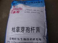 Hay Hay bacteria powder animal 500