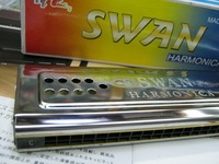 Double faced 24 C G Swan Harmonica Easy To Use For Beginner 100% QUALITY GUARANTEED