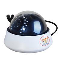 Qqzm Wireless Ip Dome Camera (Night Vision, Motion Detection, 22 Ir Led)
