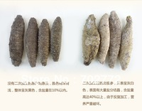 freeshiping sea slug, hot  sea' cucumber, wild and dry  apostichopus trepang,  dry goods holothurian wholesale,  beche-de-mer