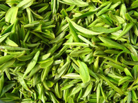 China have green tea, pure natural organic green tea 100 g special offer free shipping for sale