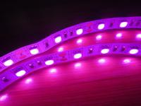 Free Shipping  LED Strip 5050 30LEDs/M 5050 300led non-waterproof led strip  family decorates Super bright