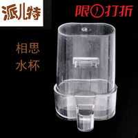 Free shipping Small cup -eye canary dispenser automatic bird water feeder