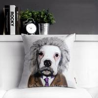 """Cartoon Star Albert Einstein Creative Beige Sofa Plush Cushion Throw Pillows, Home or Office Nap Cushion 17""""*17"""" (only cover)"""
