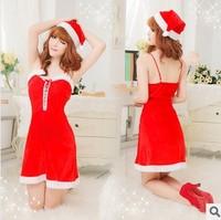 Dress christmas costume