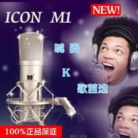 Icon Aitken icon m1 capacitor microphone mc computer set