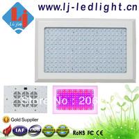 600W Led grow light 200 * 3 watt chip for green house full spectrum or 11 band for you choose