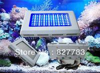 112*1w Free shipping 120w  LED Aquarium Lights blue+White 2pcs/lot Two Switch Two plug best led aquarium lighting 2013