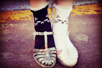 2pairs in a lot!  Black &White Hot Women Girls Lace Ruffle Cotton Ankle Socks Lovely Cat Catty Boot short socks
