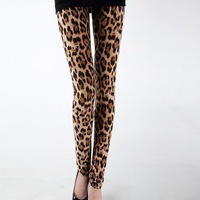 Leopard Print European Trendy Women Sexy Leggings 1pc/lot Spot Stretch Autumn/Winter Thicken Warm Leggings 3 Sizes 653889