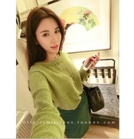 Free Shipping  autumn fashion circle velvet thick long-sleeve fleece furry net colored d51