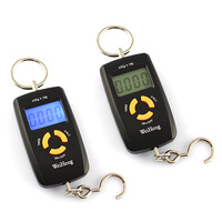 45kg 10g Electronic Household Scales Hanging Fishing Luggage Pocket Portable Digital Weight Scale