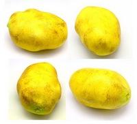 Artifiicial foam potato  for home decor