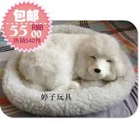 Breathing dog poodle birthday gift  free shipping