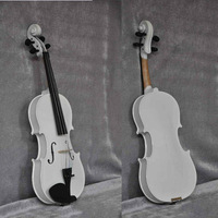 musical instrument violin White Violin,4/4,1/4,3/4,1/2, Violin free shipping Piano Paint with Violin Case,bow, rosin