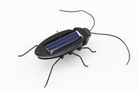 High quality Solar Power Energy Cockroach Fun Gadget Office School toy tool