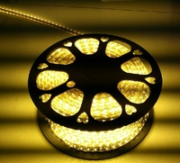 Jiamei 220v 3528 led strip lights with 5050 soft lights with 60 meters high pressure with lights