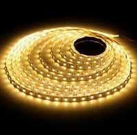 100pcs/lot 5m 300 LED  Light  3528 SMD 60 leds/m LED Strip not Waterproof