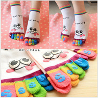 MOQ 24pcs=12pairs/lot,6 Styles New 2013 Casual Cotton Character Print Socks For Women,The color is random.