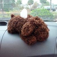 Free Shipping Cute Cartoon Lint Tissue Box Creative Teddy Dog Car Paper Tray Automotive Interior Tissue Box Accessories -3 Color