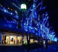Blue 100 Led Net String Light Christmas Lights New Year Light Wedding Ceremony EU/220V TK1119