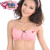 free shipping Nobility young girl bra primary school students bra wireless bra tube top 1006 underwear