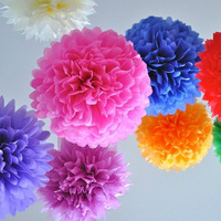"Free shipping 50pcs/lot Tissue Paper 10"" Pom Poms Paper Flower Decoration Paper Flower Ball Wedding Decoration TP-W-2502"