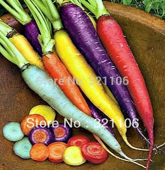 RAINBOW CARROT MIX-Seven crazy varieties Vegetable seeds 200 seeds Free shipping(China (Mainland))