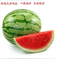 free shipping Watermelon seeds balcony indoor bonsai flower seed none watermelon seed